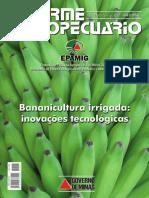 Informe Banana