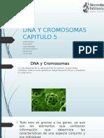 DNA Y CROMOSOMAS