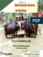 09-Sel Melhoramento Bubalinos