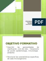 1. Clasificacion Parasitos.pptx 4c