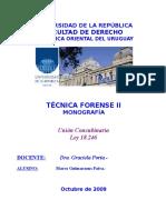 Unión Concubinaria 2009