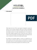 Documento Higuerilla