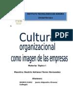 Cultura Organizacional, Ensayo.docx