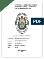 Laboratorio Envases Metalicos 2 2016