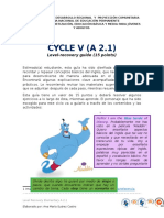 Ciclo v Level Recovery