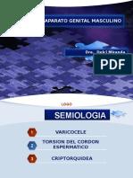 Diagnóstico Por Imagen II - Aparato Genital Masculino