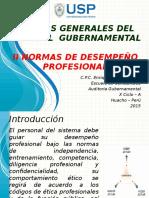 12 Normas de Desempeño Profesional