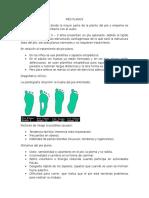 PIES PLANOS.doc