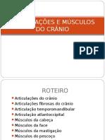 AULA 02 ARTICULAÇÕES E MÚSCULOS DO CRÂNIO