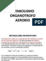 3.Respiracion Celular