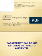 Caracteristicas de Los Eia - Minas Uncp 2013