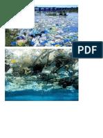 Geografia - Imagens de Degradação Dos Oceanos