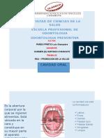 RSU_II_UNIDAD_LUIS_PARDO.docx