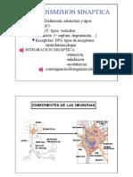 2.-la_transmision_sinaptica.pdf