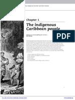 Amerindian_Settlement (1).pdf