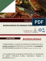 presentaciinbioseguridad2014-11b1be4448(1).pdf