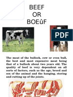 Beef.ppt