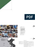PROGRAMA DEVIDA - PERÚ (1).pdf
