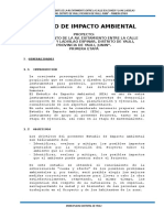 Estudio de Impacto Ambiental Av. Evitamiento