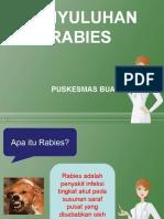 Penyuluhan Rabies PKM BUA