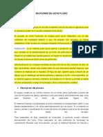 SECADORES DE LECHO FLUIDO.docx