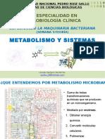 Clase 5t_metabolismo y Sistemas