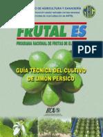 Guía Limón