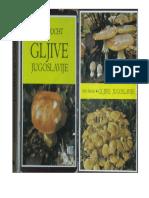 GLJIVE JUGOSLAVIJE.pdf