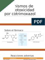 mecanismos de hepatotoxicidad por cotrimoxazol