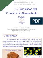Tema 15.- Durabilidad Del Cemento de Aluminato de Calcio