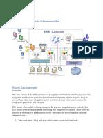 ESB Console Technical Information Bin