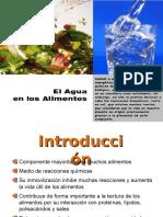 El Agua en Los Alimentos
