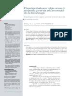 Clube 2 - acne vulgar.pdf