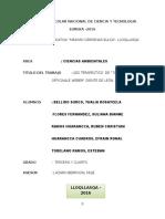 FENCYT2016 MACSLL.docx