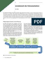 pflegebericht_kernelement_der_dokumentation_7010.pdf