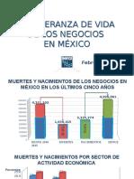Presentación Esperanza de Vida de Los Negocios en México 2015