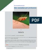 Enfermedades causadas por protozoos.docx