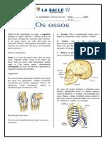 Exercicios de fixacao Ossos_EFII.pdf