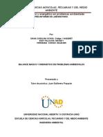 Trabajo Final Pre Informe e Informe de Balance12