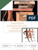 Musculo esqueletico.pptx