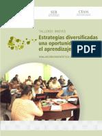 Estrategias Diversificadas - Una Oportunidad Para El Aprendizaje (1)