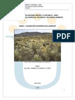 modulo_valorac_econ_ambte.pdf