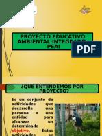 Proy Ed Amb Integrado (1)(1)