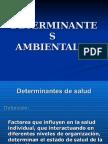 Determinantes Ambientales