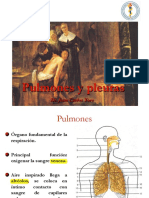 pulmonesypleuras-141103210821-conversion-gate01.pdf