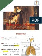 pulmonesypleuras-141103210821-conversion-gate01.pdf