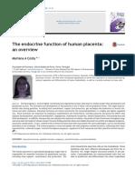 Placenta and Hormones 2016 (1)