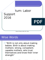 IP Labor Support 2016