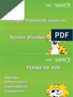 ARL SURA PRIMEROS AUXILIOS -Tejidos Blandos-.ppt