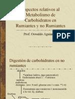 Aspectos relativos al Metabolismo de Carbohidratos en Rumiantes.pdf
